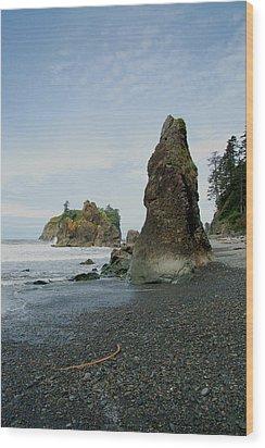 Washington State Seashore Wood Print by Nancy Landry