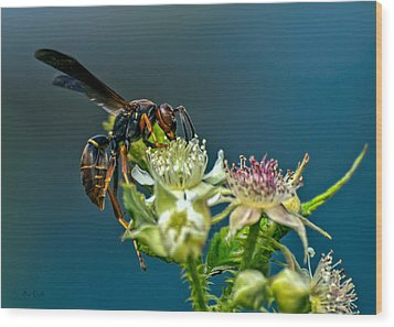 Wasp Wood Print by Bob Orsillo