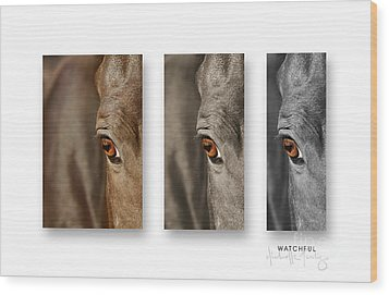 Watchful Triptych Wood Print