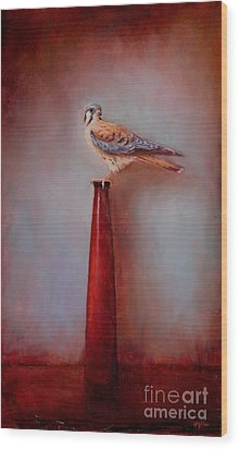 Watchtower - American Kestrel  Wood Print by Lori  McNee