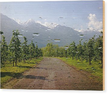 Wood Print featuring the photograph Water And Apple Juice by Giuseppe Epifani