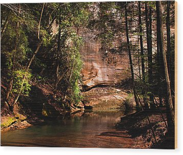 Wood Print featuring the photograph Water And Sandstone by Haren Images- Kriss Haren