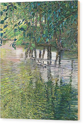 Water And Woodland Wood Print by Nick Payne