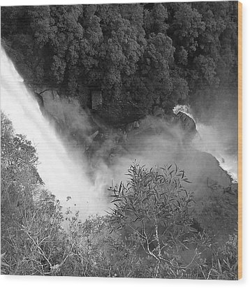 Water Fall And Bushland Wood Print by Cheryl Miller