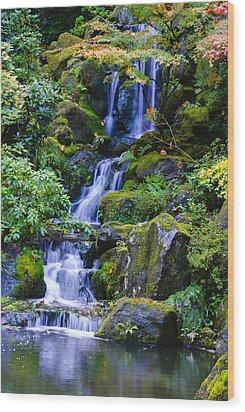 Water Fall Wood Print by Dennis Reagan