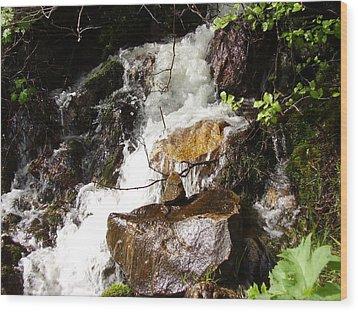 Water Fall Wood Print by Yvette Pichette