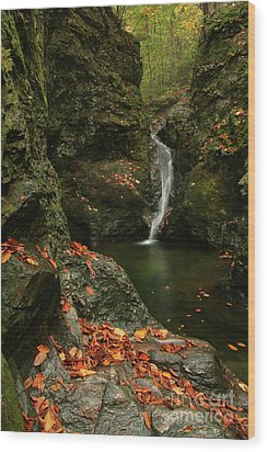 Water Falls As Autumn Starts Wood Print by Karol Livote