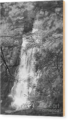 Water Falls Wood Print by Paul Cammarata