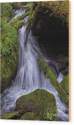 Water Feature Wood Print