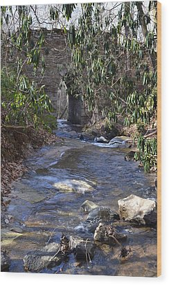 Water Flow To Poinsett Wood Print