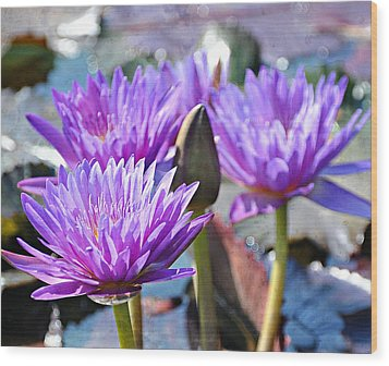 Wood Print featuring the photograph Water Flower 1006 by Marty Koch