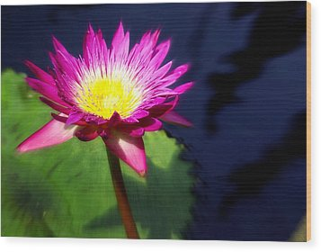 Water Flower Wood Print by Marty Koch