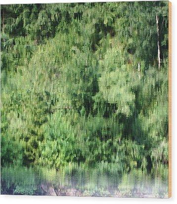 Water Forest Wood Print by Stanislav Killer