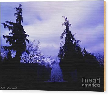 Wood Print featuring the photograph Water Fountain At Alderwood Business Center In Lynnwood Washington by Eddie Eastwood