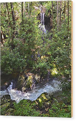Water In The Forest Wood Print by Susan Leggett