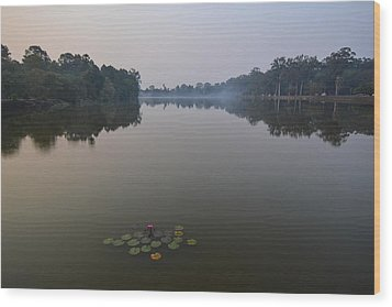 Water Lilies At Dawn Wood Print