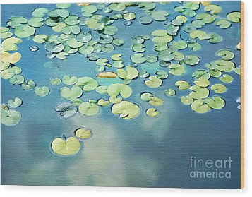 Water Lilies Wood Print by Darren Fisher