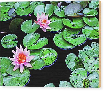 Water Lillies -- Inspired By Monet-1 Wood Print
