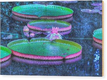 Flower 15 Wood Print