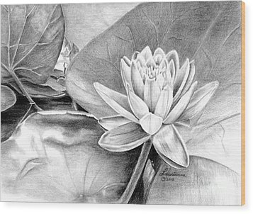 Water Lilly Wood Print by Laurianna Taylor