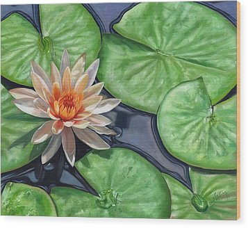 Water Lily Wood Print by David Stribbling