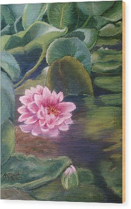 Wood Print featuring the pastel Water Lily In Bloom  Pastel by Antonia Citrino