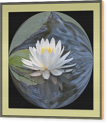 Water Lily Wood Print by Michele Kaiser