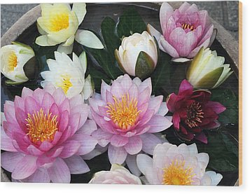 Wood Print featuring the photograph Water Lily Series -2  by Haleh Mahbod
