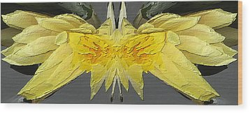 Water Lily Unleashed 4 Wood Print by Tim Allen