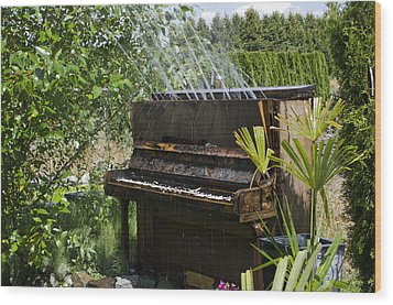 Water On My Piano Wood Print by Irene  Theriau