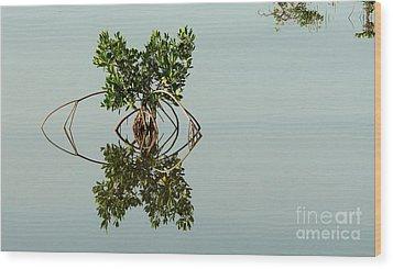 Water Pond  Wood Print by Javier Correa