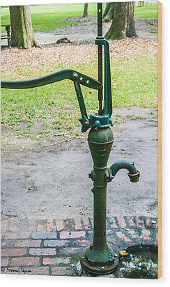 Water Pump  Wood Print by Steven  Taylor