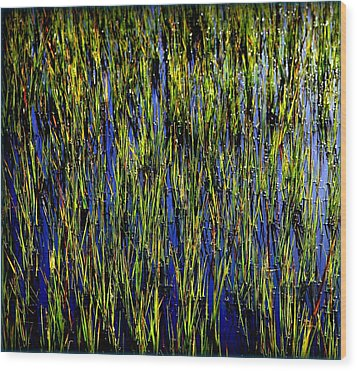 Water Reeds Wood Print by Karen Wiles