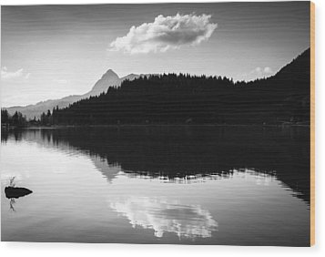 Water Reflection Black And White Wood Print