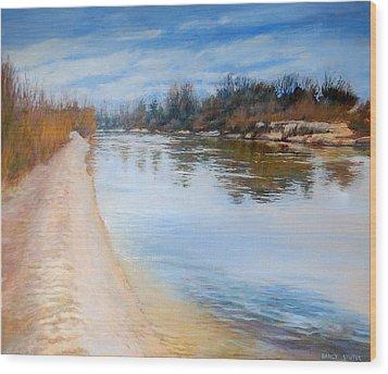 Water Reflection Wood Print by Nancy Stutes