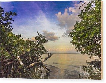 Water Sky Wood Print