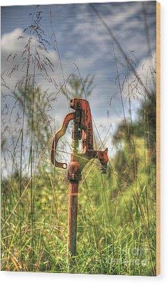 Water Spicket Wood Print by Robert Loe