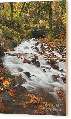 Water Under The Bridge Wood Print by Mike  Dawson