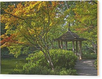 Watercolor Gardens Wood Print by Joan Carroll