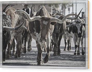Watercolor Longhorns Wood Print by Joan Carroll