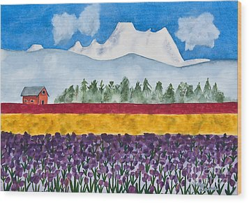 Watercolor Painting Landscape Of Skagit Valley Tulip Fields Art Wood Print by Valerie Garner