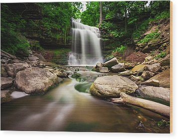 Waterdown Falls - 01 Wood Print
