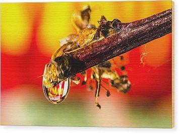 Waterdrop Refraction  Wood Print