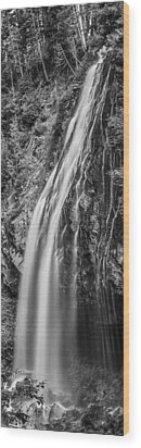 Wood Print featuring the photograph Waterfall 3 Bw by Chris McKenna