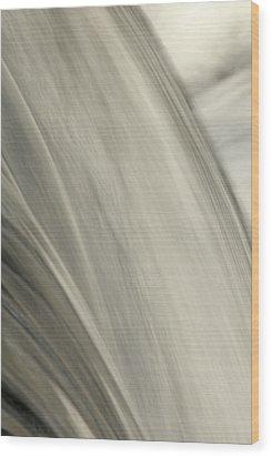 Waterfall Abstract Wood Print by Karol Livote