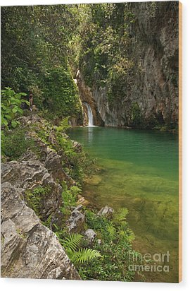 Waterfall And Pool Paradise - Cuba Wood Print by OUAP Photography