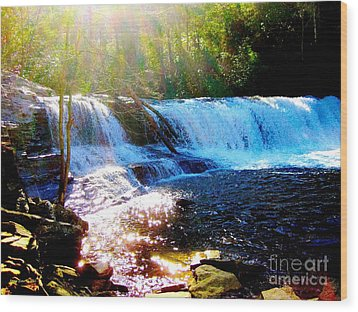 Waterfall At Dupont Forest Park Nc 2 Wood Print by Annie Zeno