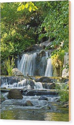 Waterfall At Lake Katherine Wood Print by Larry Bohlin