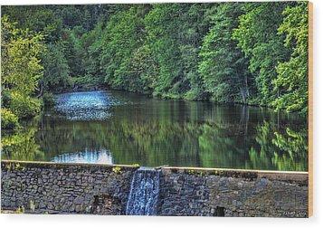 Waterfall At Minas Basin Pulp And Power Co   Wood Print by Ken Morris