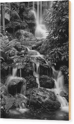 Waterfall At Rainbow Springs Wood Print by Beverly Stapleton